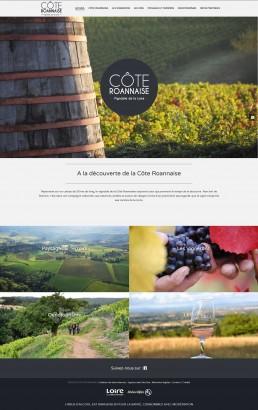 création du site internet de vignerons roannais