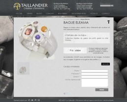 creation site web bijoutier