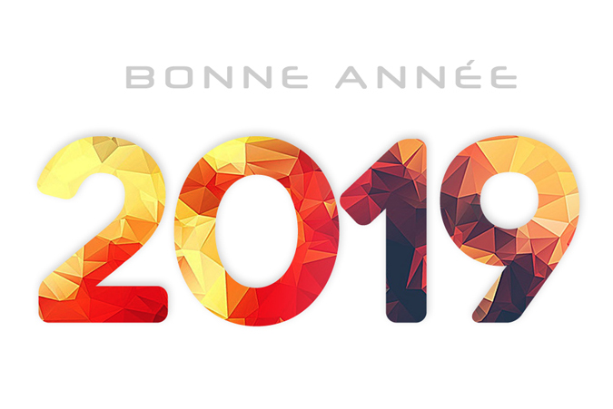 voeux 2019 agence web Site line