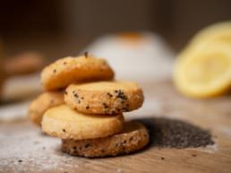 creation site vente en ligne de biscuits bio