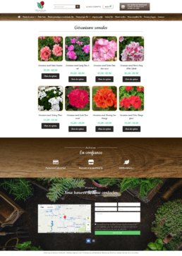 Conception site Internet click & collect St Etienne